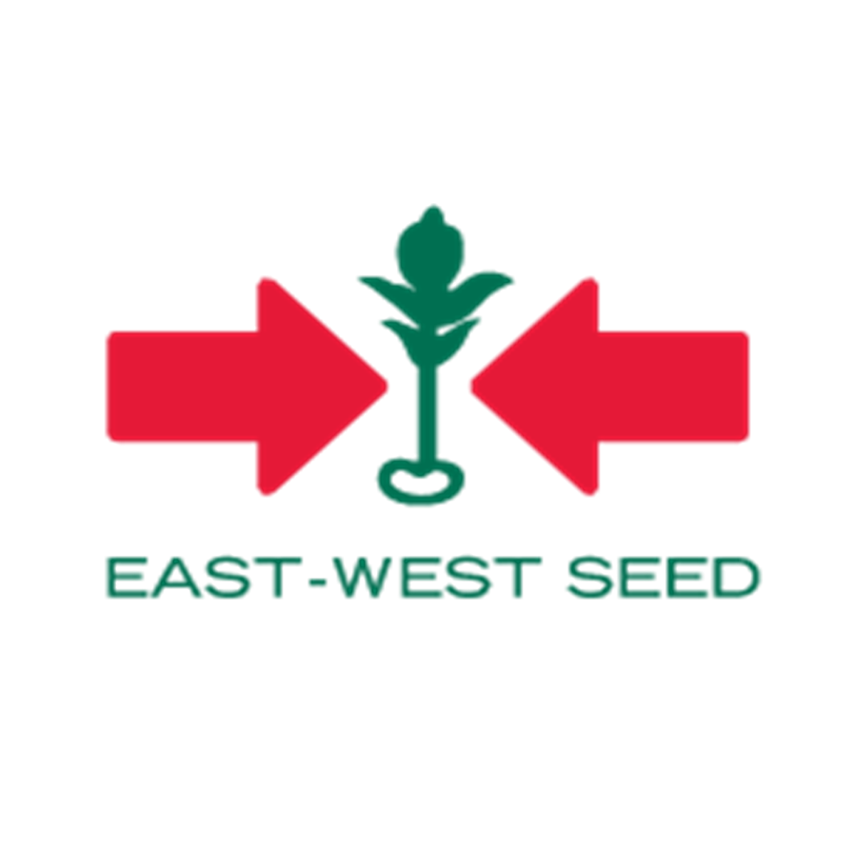 PT. East West Seed Indonesia Cab. Pontianak
